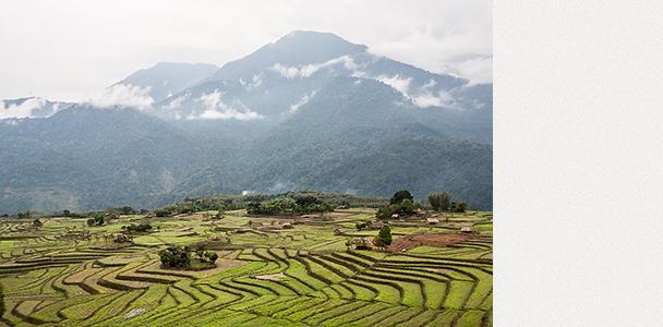 Алонг, Индия