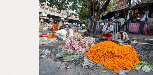 Колката - пазар за цветя